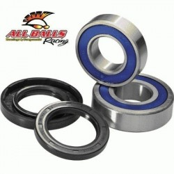 KIT DE REPARACION RUEDAS TRASERAS ALL BALLS RACING ARTIC CAT / KAWASAKI / SUZUKI 400c.c.
