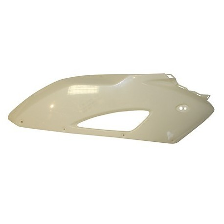 CARENADO LATERAL SUPERIOR ABS HONDA CBR 1000 RR 2004-2005 DERECHO