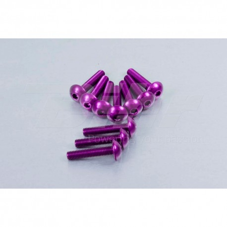 Kit tornillos de carenado Pro-Bolt ZX10R (08-10) aluminio violeta FKA287P